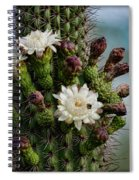 Cacti Bouquet  Spiral Notebook
