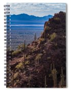 Cacti Covered Rock At Tucson Mountains Spiral Notebook