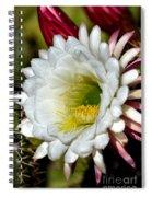 Cacti Flora Spiral Notebook
