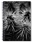 Cacti Spiral Notebook