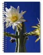 Cactus Blooms Spiral Notebook