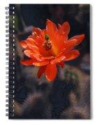 Cactus Blossom 1 Spiral Notebook