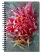 Cactus Blossom 6 Spiral Notebook