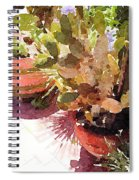 Cactus Garden Spiral Notebook
