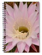 Cactus In The Backyard Spiral Notebook