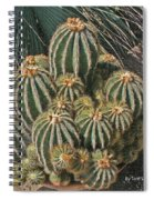 Cactus In The Garden Spiral Notebook