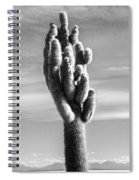 Cactus Island Salt Flats Black And White Spiral Notebook
