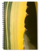 Cactus Spines 1 Spiral Notebook