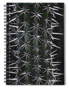 Cactus Spines Spiral Notebook