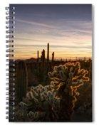 Cactus Sunset  Spiral Notebook