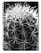 Cactus Thorn Pattern Spiral Notebook