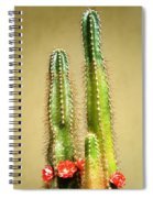 Cactus Towers Spiral Notebook