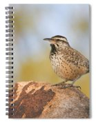 Cactus Wren On Rock Spiral Notebook