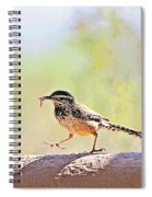 Cactus Wren With Worm Spiral Notebook