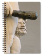 Cacus.. Spiral Notebook