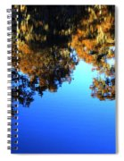 Caddo Lake Reflections Spiral Notebook
