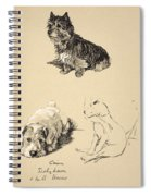 Cairn, Sealyham And Bull Terrier, 1930 Spiral Notebook