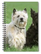 Cairn Terrier And Scottish Terrier Spiral Notebook