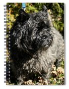 Cairn Terrier Portrait Spiral Notebook