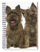 Cairn Terriers Spiral Notebook