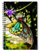 Cairns Birdwing Spiral Notebook