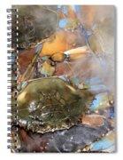 Cajun Feast Spiral Notebook