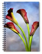 Cala Lili 6 Spiral Notebook