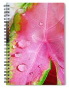 Caladium Leaf Spiral Notebook