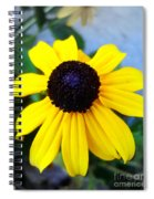 Calendula Spiral Notebook