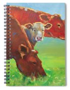 Calf And Cows Painting Spiral Notebook