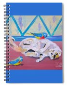 Calico And Friends Spiral Notebook