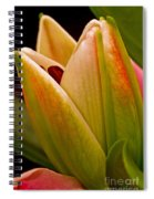 California Lily Spiral Notebook