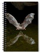 California Long-nosed Bat Flying Away Spiral Notebook