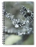 California Moss Spiral Notebook