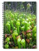 California Pitcher Plant Spiral Notebook