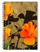 California Poppies - Crisp Shadows From The Desert Sun  Spiral Notebook