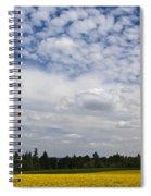 California Poppies Spiral Notebook