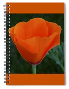 California Poppy Spectacular Spiral Notebook