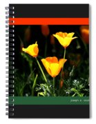 California Poppys 2007 Spiral Notebook