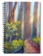 California Redwoods Spiral Notebook