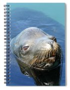 California Sea Life Spiral Notebook