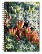 California Seaside Garden Spiral Notebook