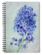 Californian Blue Spiral Notebook
