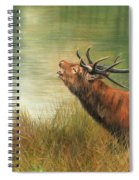 Call Of The Wild 2 Spiral Notebook