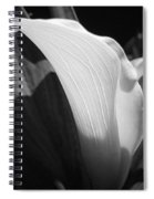 Calla Lily Named Crystal Blush Spiral Notebook