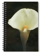Calla Lily Spiral Notebook