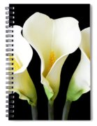 Calla Lily Trio Spiral Notebook