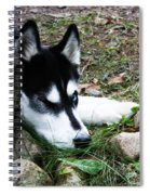 Calm And Comfy Spiral Notebook