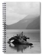 Calmness Of Nature Spiral Notebook