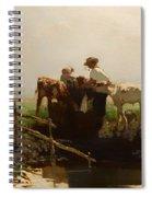 Calves At A Trough Spiral Notebook